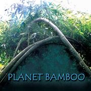 ��Planet��Bamboo��