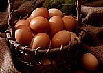 最高の卵料理