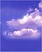雲のように自由に生きたい