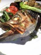 魚のトラットリア VIN SANTO
