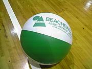 徳島ビーチボールバレー
