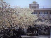 和歌山市立今福小学校
