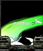 evergreen / kors k