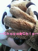 Choco★Chip