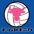 "Volleyball Team ""YAKINIKU"""