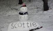 scottie =ティッシュじゃないよ=