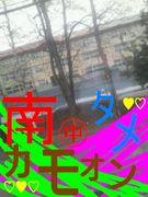*:・帯広南中13年卒業生・:*