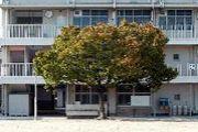 大阪市立大領中学校