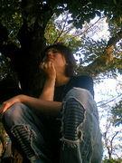 WHIMSYBEE
