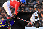 ボンネビル競馬