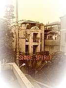 §SHARE SPIRIT§