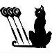 ★Black Cat★