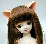 MSDの猫耳が好き!