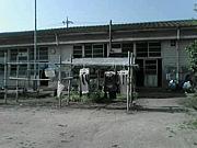 ちび卒2010