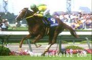 NRNAAP 秋競馬2007