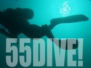 ダイビング好き!55DIVE!