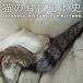 猫の耳に日本史