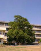 群馬県立境高等学校
