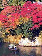 秋の京都に行こう会