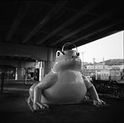 神戸トイカメラクラブ