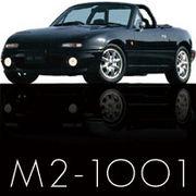 M2-1001