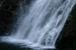 屋久島大川の滝つぼに飛び込む