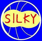 平日バスケサークル『SILKY』