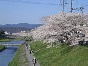 高野中学校(京都)