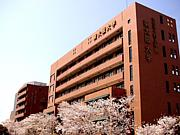 2013年度 東大阪大学 新入生