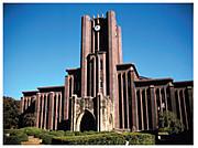 東大医学部 2010年度進学生
