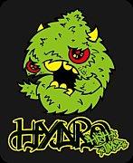 HYDRO High Timez