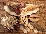 貝殻ハンドメイド雑貨