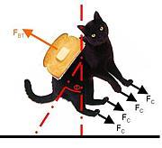 猫トースト装置