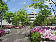 2013年 兵庫教育大学 新入生