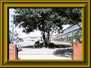 立川市立第四小学校