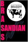 SandianBrass2008