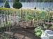手造り庭造り