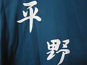 慶應平野ゼミ