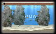[アクアノート online aquarium]