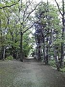 小平グリーンロードを歩こう