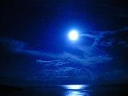 Moonlightチャット時代の友探し