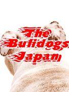 The Bulidogs Japan