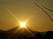 東日本巨大地震、災害復興支援