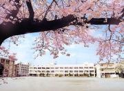 ☆千歳中2001年卒業生☆