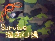 Survive溜まり場