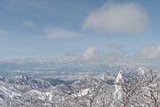 平日スキー FSスキークラブ