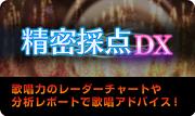精密採点DX by LIVE DAM