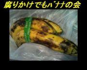 腐りかけでもバナナの会