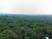 平成19年度森林科学科.:**