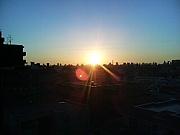 日の出大好き!